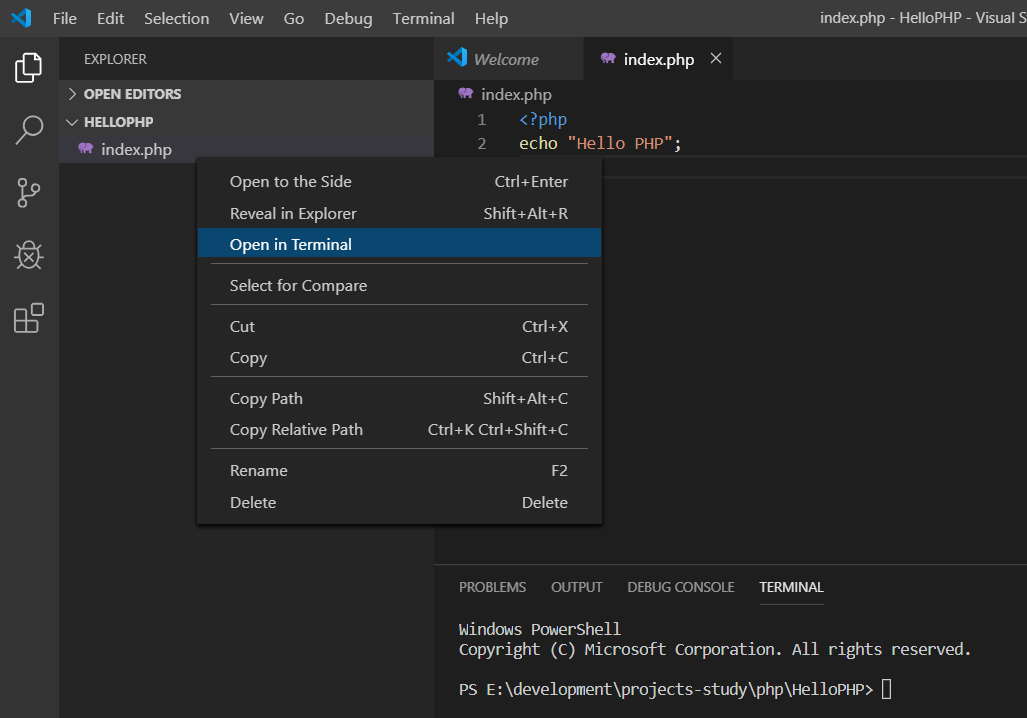 Visual Studio Code - Terminal