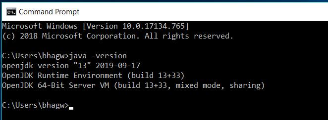 OpenJDK 13 Version