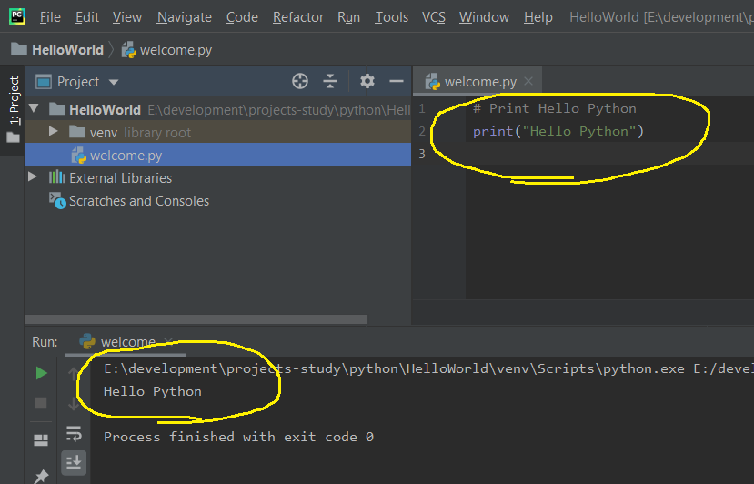 PyCharm Program Output