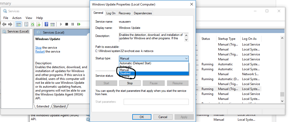 Windows - Service Properties