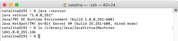 Java - Mac - Check Versions