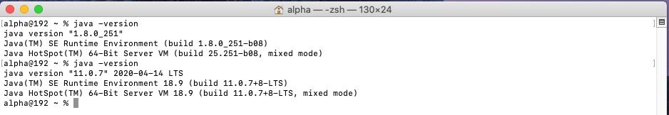 Java 11 - Mac - Check