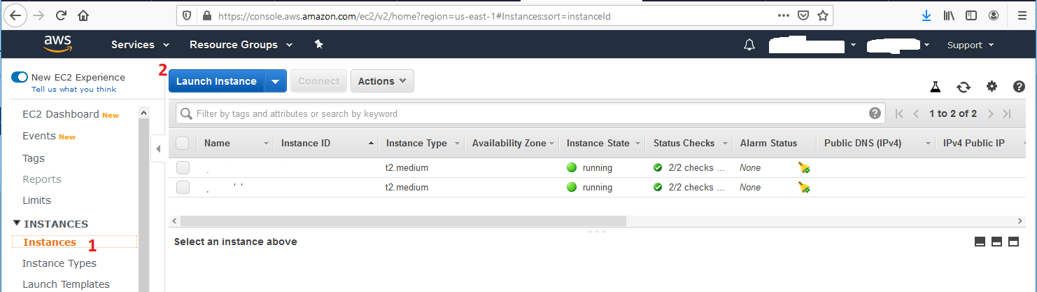 Ubuntu 20.04 LTS On AWS EC2 - AWS EC2 Instances