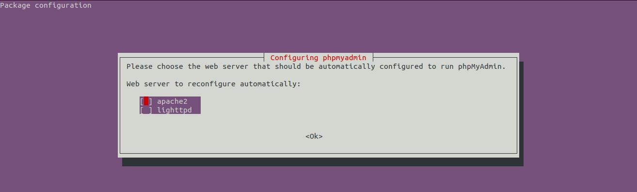 Install phpMyAdmin On Ubuntu 20.04 LTS - Choose Web Server