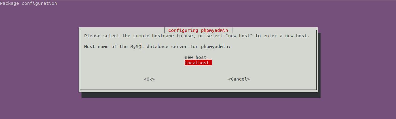 Install phpMyAdmin On Ubuntu 20.04 LTS - Host