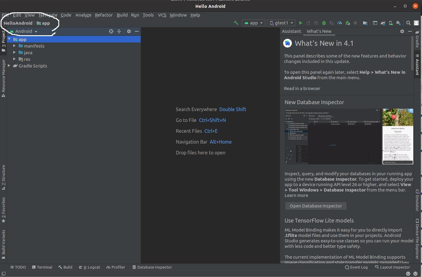 Install Andriod Studio On Ubuntu 20.04 - Workspace