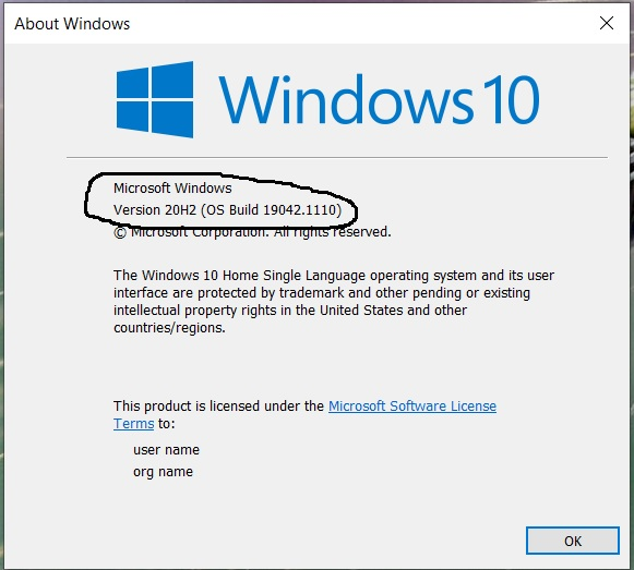 Install Windows Subsystem For Linux WSL 2 on Windows 10 - Check Version