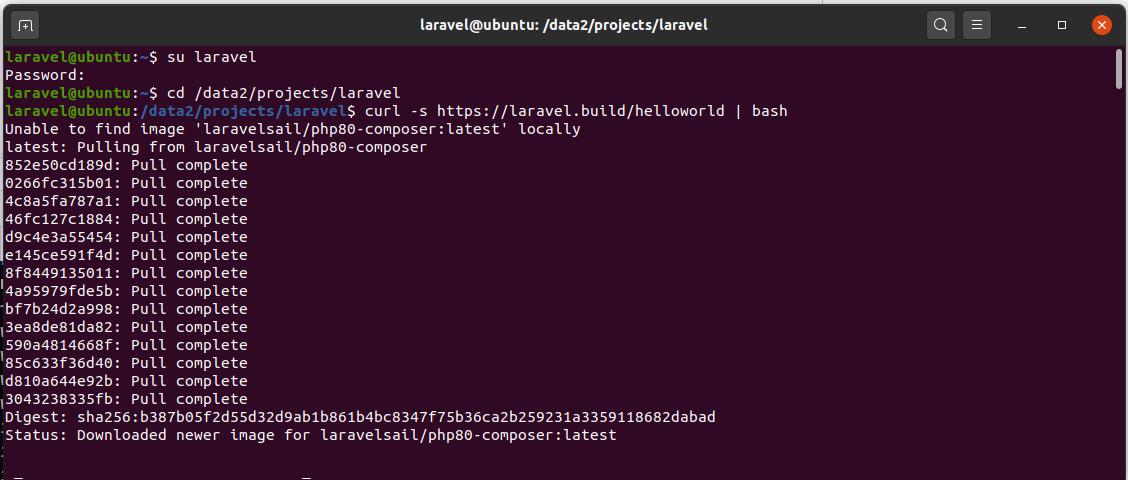 Install Laravel On Ubuntu Using Docker Engine and Laravel Sail - Create Project