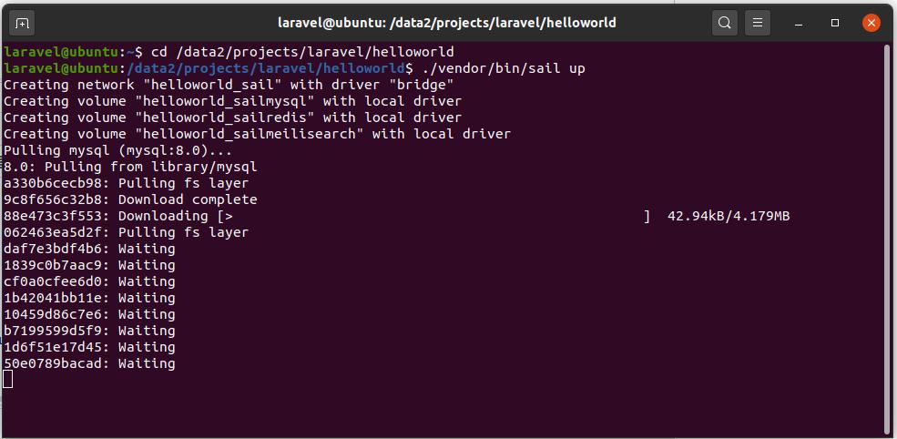Install Laravel On Ubuntu Using Docker Engine and Laravel Sail - Launch Project